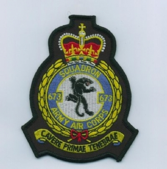 673 AAC OFFICIAL CREST EMBROIDERED BADGE