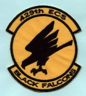 429TH ECS BADGE