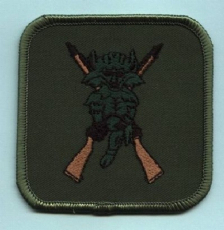 2503 SQN X RIFLES EMBROIDERED BADGE