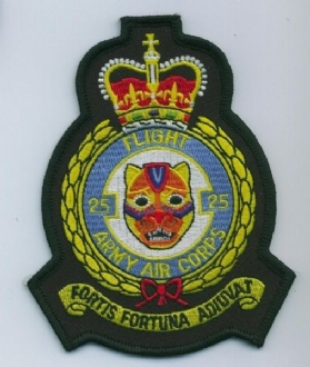 25 FLIGHT AAC CREST