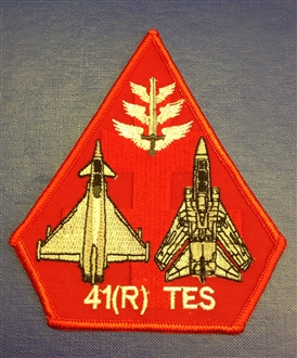 41 (R)  SQN TES BADGE