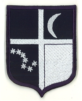 7 SQN TAC BADGE