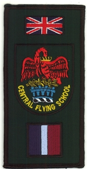 CFS FACS CREST BADGE