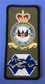 14 SQN FACS CREST BADGE