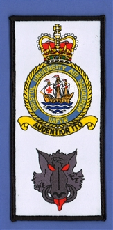 BRISTOL UAS/HOGS HEAD FACS BADGE