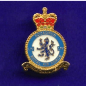 54 SQN CREST PIN BADGE