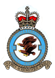 11 SQN CREST STICKER