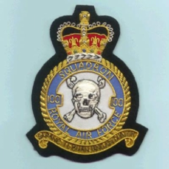 100 SQN CREST GOLD WIRE BADGE