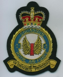 1 SQN CREST GOLD WIRE BADGE