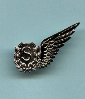 RAF S WING PIN BADGE