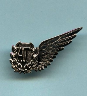 RAF AT WING PIN BADGE