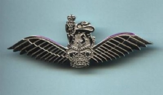 AAC PILOT WING PIN BADGE