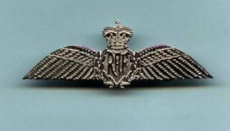 RAF PILOT WING PIN BADGE