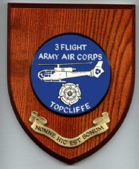 3 FLT AAC TOPCLIFFE WALLSHIELD